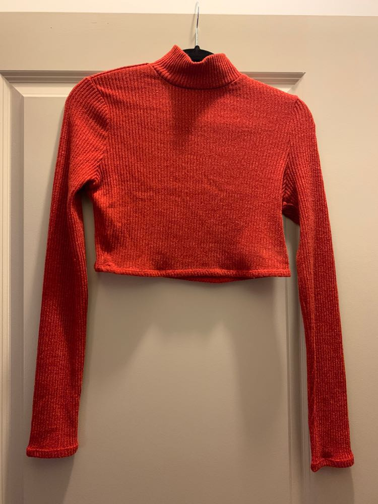 1e4398886b9 Tobi Burnt Orange Long Sleeve Crop Top | Curtsy