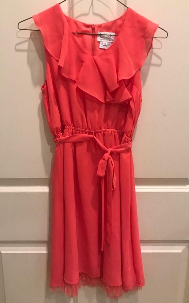 e1869aaa878e Blush Ruffle Coral Dress