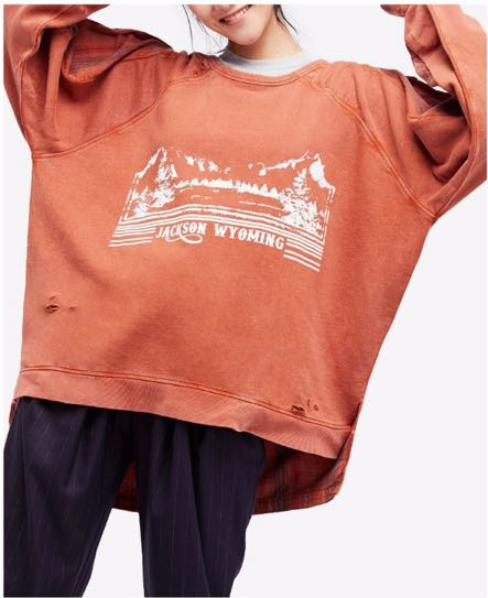 Free People Distressed Sweatshirt