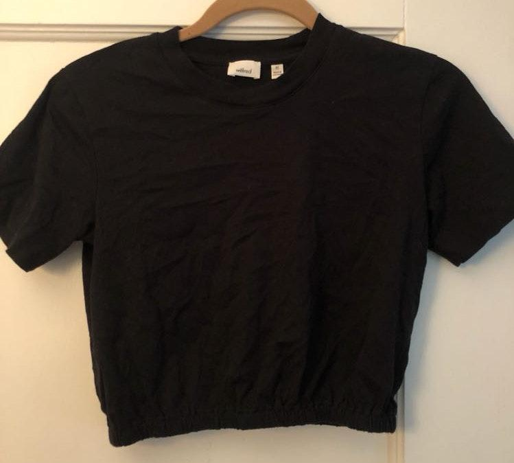 Aritzia Black Cropped T Shirt