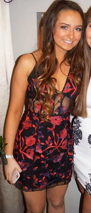Tobi Rose Embroidered Dress
