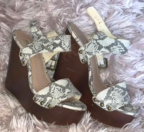 Steve Madden Snakeskin Shoes