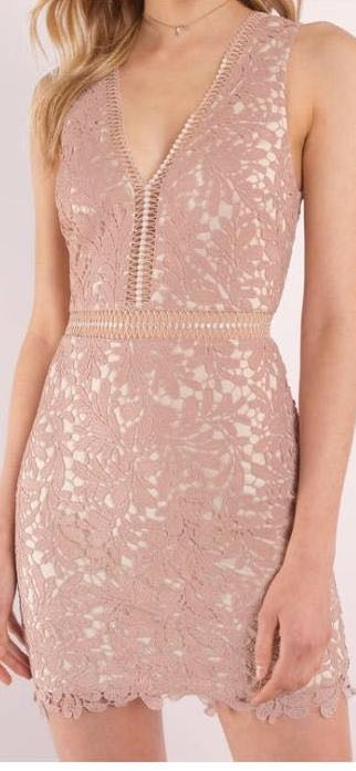 Tobi LEI ROSE AND NUDE LACE BODYCON DRESS