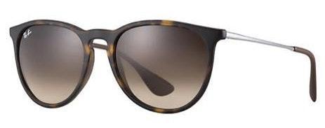 Ray-Ban Erika Brown Gradient Sunglasses